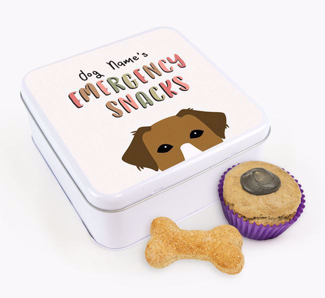 'Best Treats in Town' Square Tin for your Borador