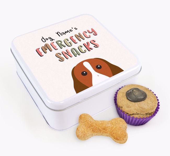 'Best Treats in Town' Square Tin for your Welsh Springer Spaniel