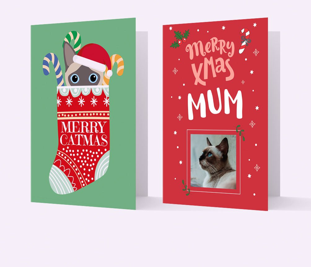 Personalised Cat Christmas Cards