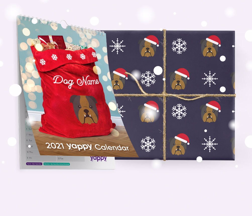 Christmas Shop for Dogs