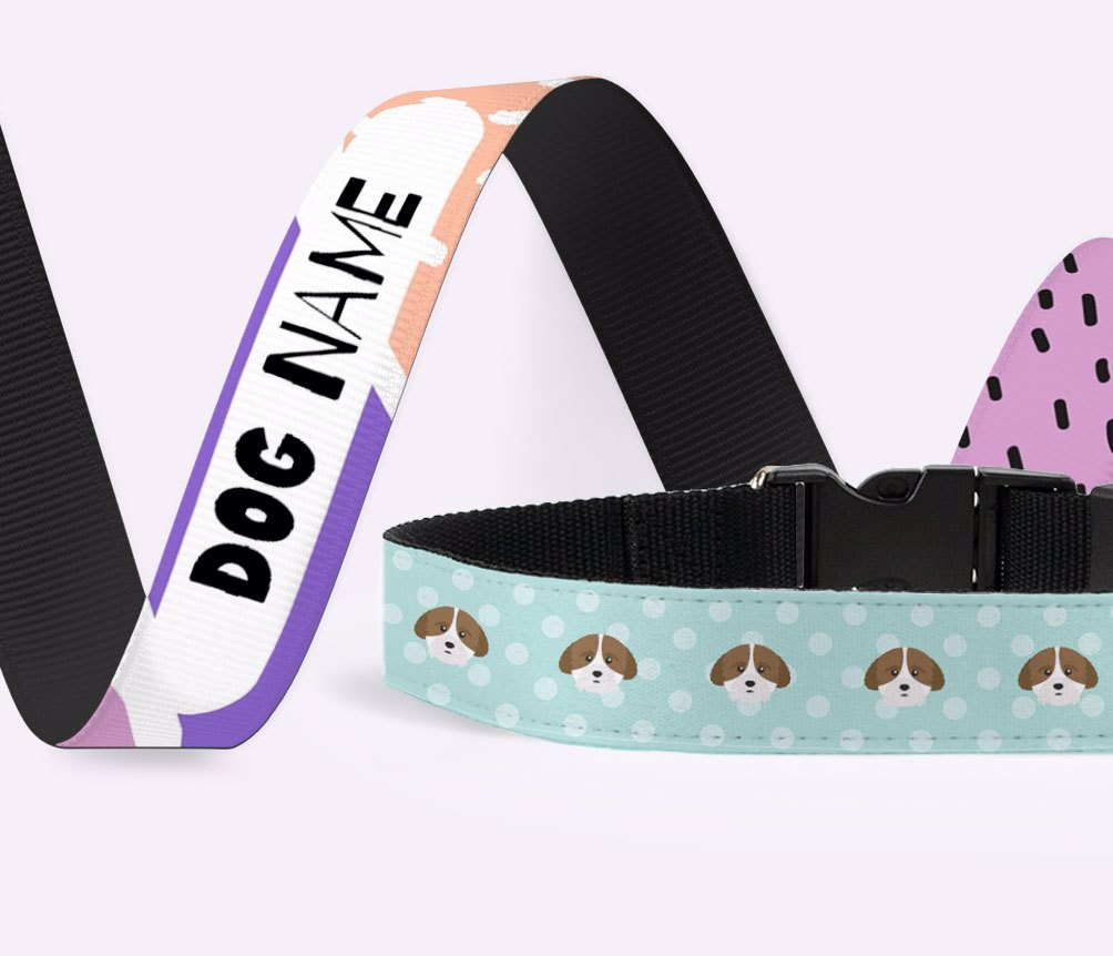 Personalized Dog Leashes & Collars