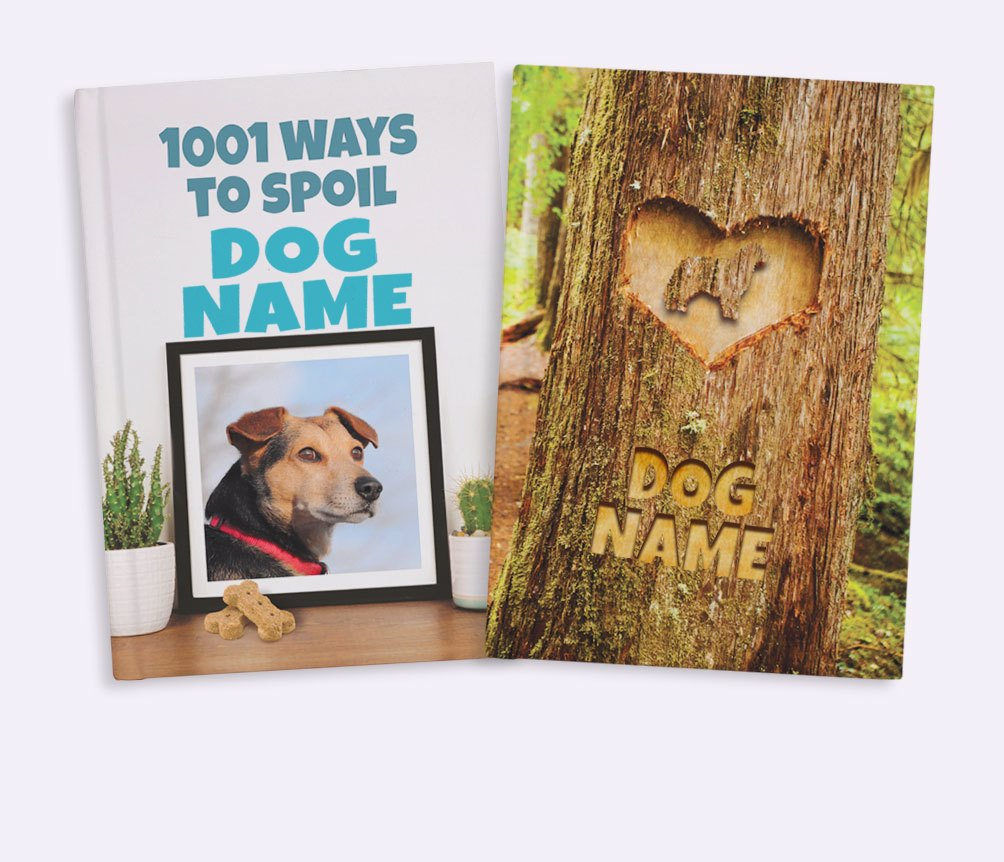 Personalized Notebooks