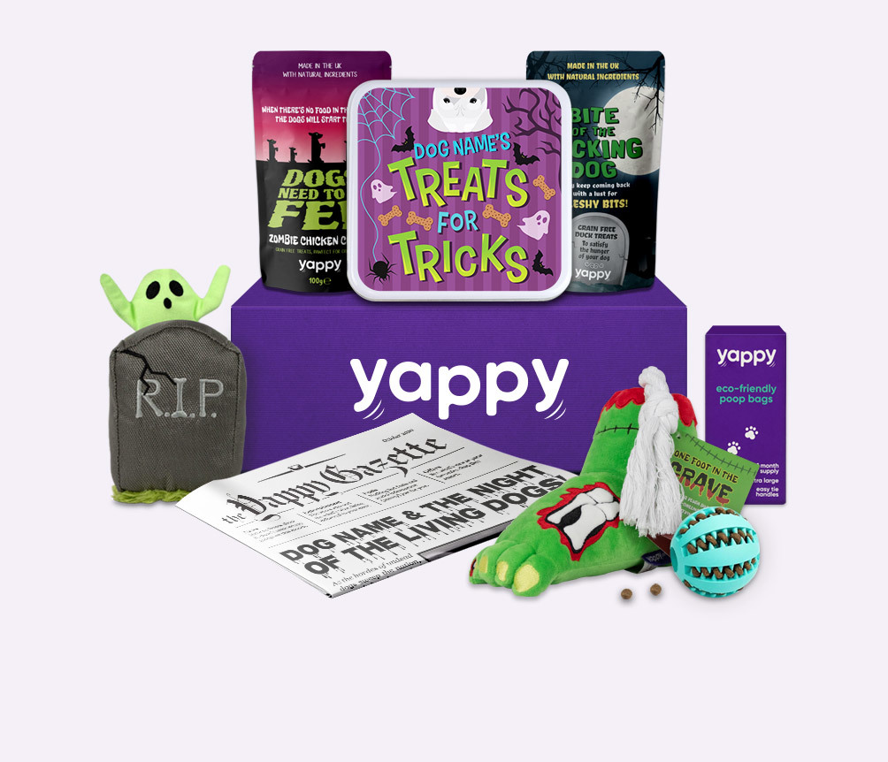 Howloween Subscription Box (NEW)