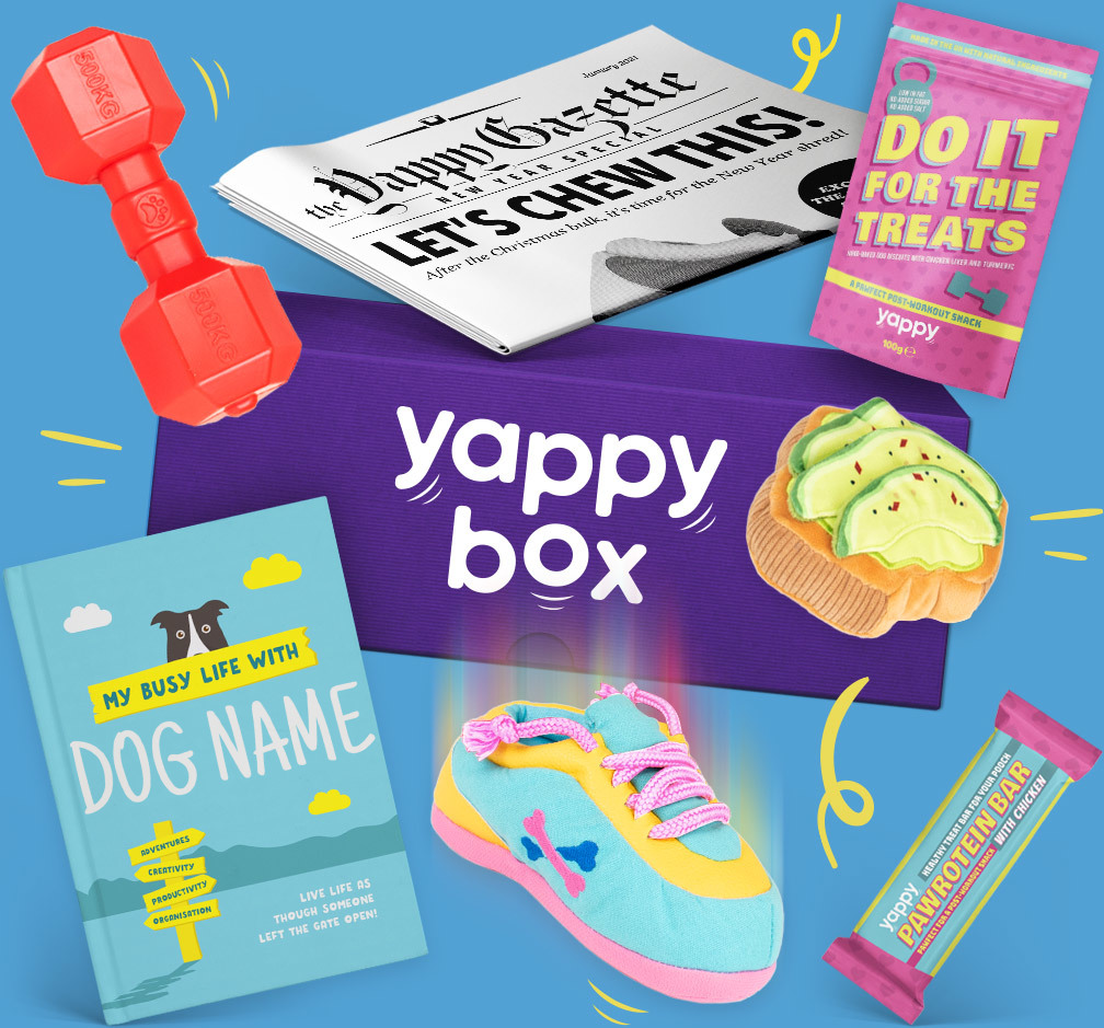 January YappyBox