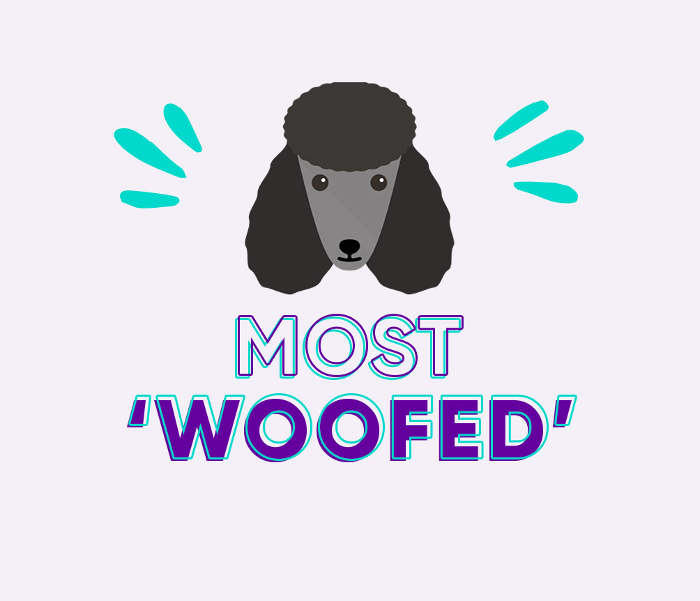 Most 'Woofed' Dog Gifts