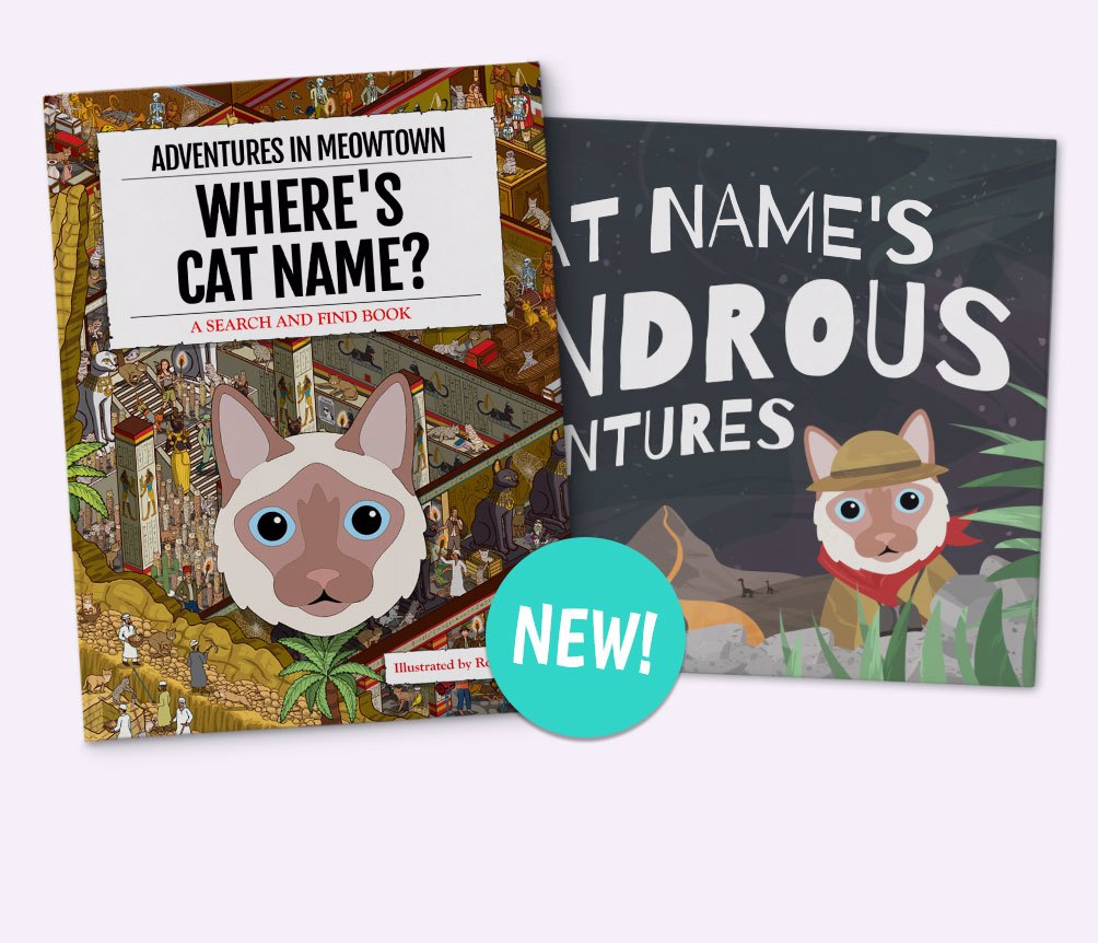 Personalized Cat Book