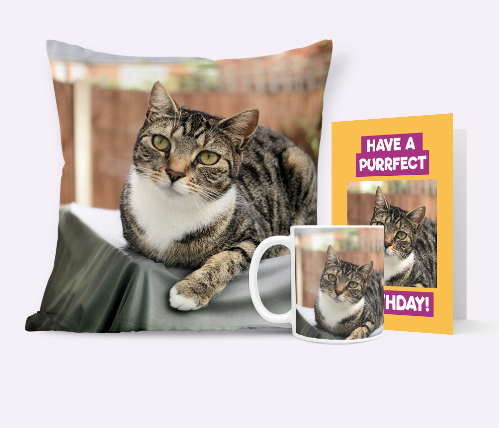 Cat Photo Upload Gifts & Cards